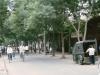 Xian-1984-calle