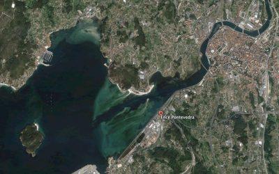 CELULOSA DE PONTEVEDRA Y FUNCIONES DEL GOBIERNO