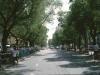 13-Beijing-1984_calle-1-arbolada